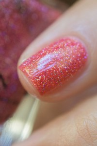 ILNP_Summer 2017 Jellies_Sunkissed_10