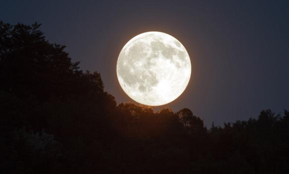 New Moon: April 21