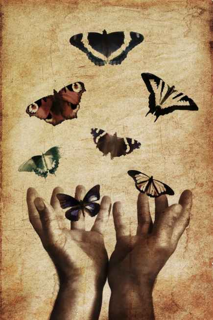Hands butterflies freedom