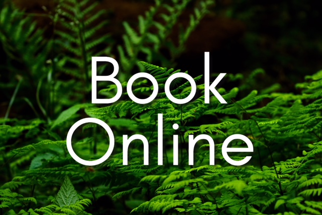 Book Online Coaching Auckland