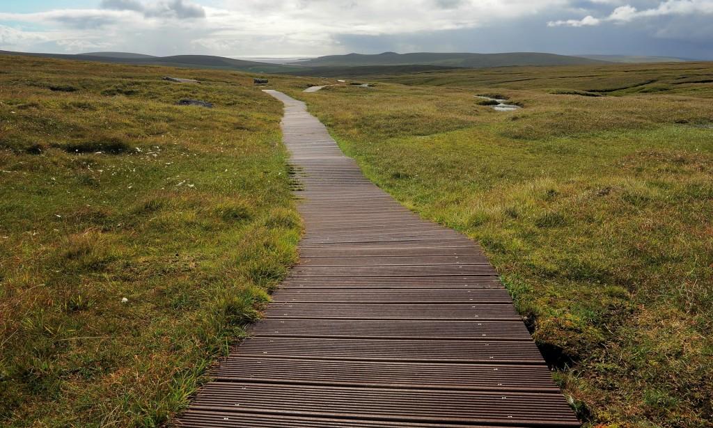 La lunga passerella in legno che attraversa immense distese di torba fino a HERMANESS