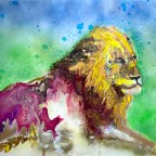 Sovereign Lion 80x100cm