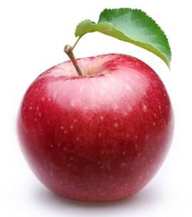 Apple Bitter