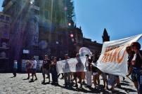 ilcanallarubens_sos meixo no dia da patria en compostela_04_2016_Compostela
