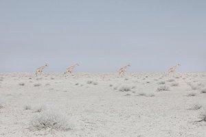 """""""Land of Nothingness"""" di Maroesjka Lavigne, la bellezza della Namibia"""