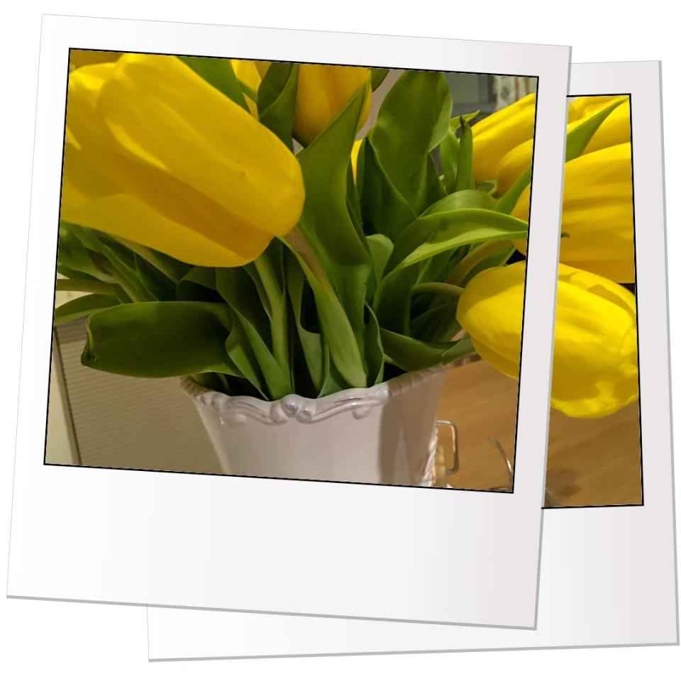 Tulipani - Antica Maddalena