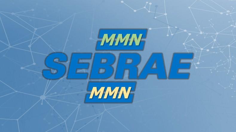 Marketing Multinível Sebrae - Introdução