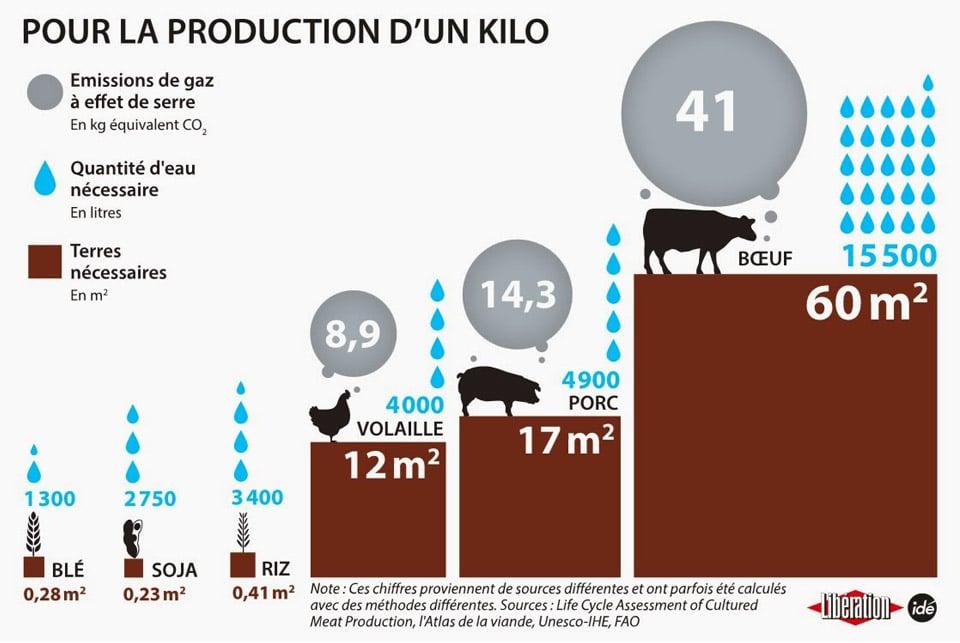 Infographie consommation de viande et gaz a effet de serre