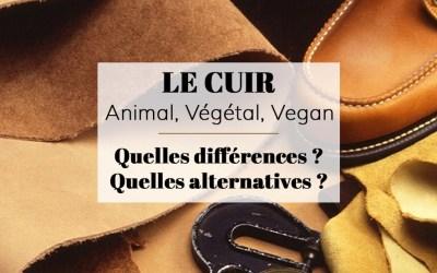 Cuir vegan ou végétal, découvrez les vraies alternatives au cuir
