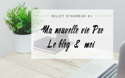 Billet d'humeur : Ma nouvelle vie pro, le blog & Moi