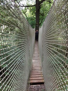 The completed canopy walkway