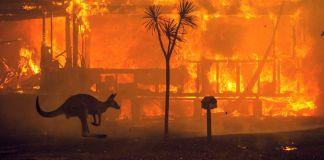 Australia in fiamme