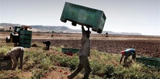 Agricoltura-Caporalato