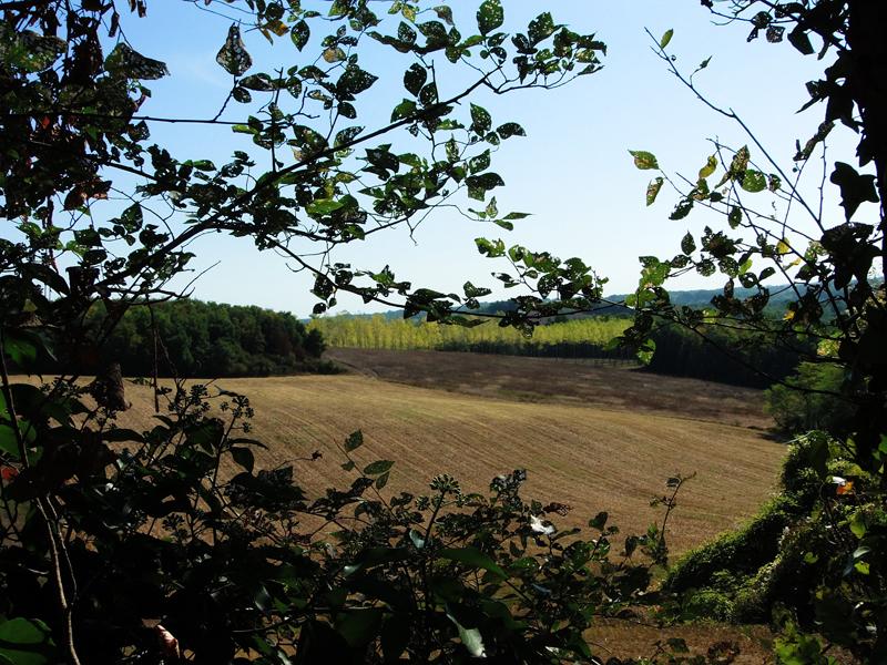 Nuit insolite en Tarn et Garonne