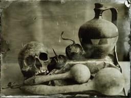 Skull Ambrotype / 18x24cm / framed
