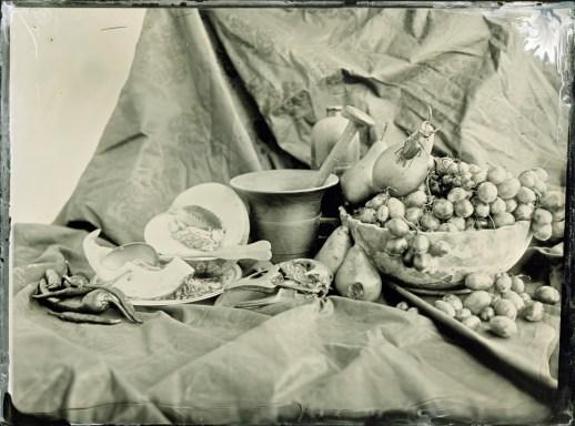 An Abundance of Fruit Ambrotype / 18x24cm / framed