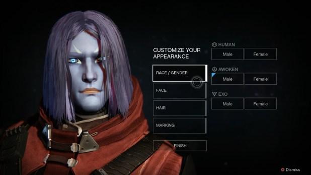 Appearance (Character Customization) - Destiny