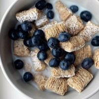 frosted shredded mini wheat