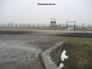 A Somber Day in Auschwitz – Birkenau