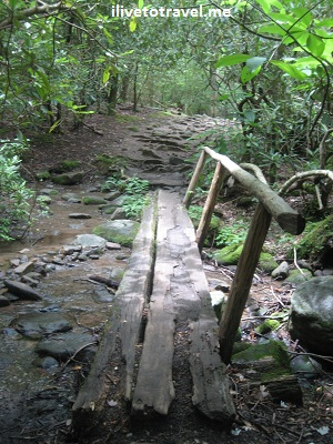 Trail in the Ogle farm - a great nature walk - in the Great Smoky Mountain National Park