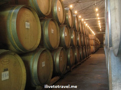 Wine barrels in Mendoza wineries in Argentina