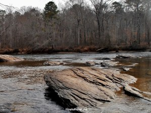 Chattahoochee River Hikes:  Island Ford
