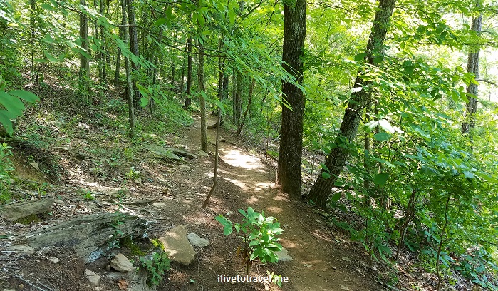 Vickery Creek, Roswell, Georgia, Chattahoochee, river, park, Atlanta, hiking, outdoors, nature, trail, Samsung Galaxy S7, photo