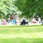 Party and Picnic in The Park
