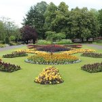 Bloom success for Erewash