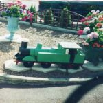 An Ilkeston pensioner has been left upset after this  green  miniature railway e…