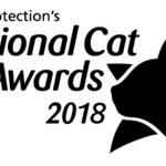 Cats Protection | National Cat Awards