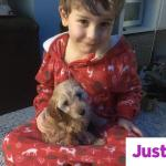 Help raise £7000 to pay for a life saving operation for our sons therapy puppy