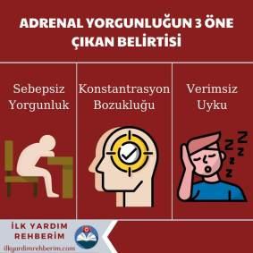 adrenal yorgunluk nedir