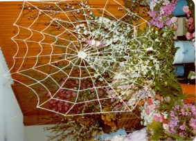 North Illawarra Garden Club Spring Floral Festival Display - Spider in web flower arrangement Date: probably mid 70's