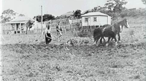 P03726 - Keiraville, 1949