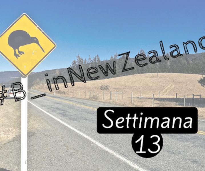 #B_inNewZealand – Settimana 13