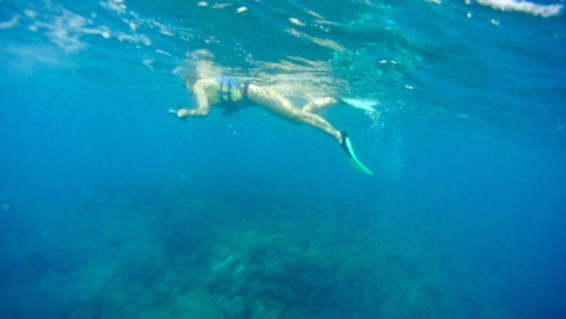 Fare snorkeling alle Isole Mamanuca e Yasawa