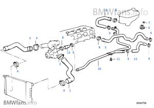 Bmw E36 M3 Cooling Diagram | WIRING DIAGRAM