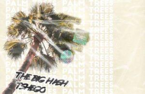 MP3: The Big Hash – Palm Trees ft. Tshego