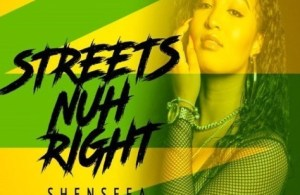 DOWNLOAD: Shenseea – Streets Nuh Right (mp3)