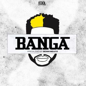 DOWNLOAD: DJ ECool – Banga (mp3)