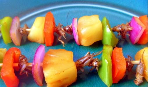 Check Out Insects People Eat Around The World
