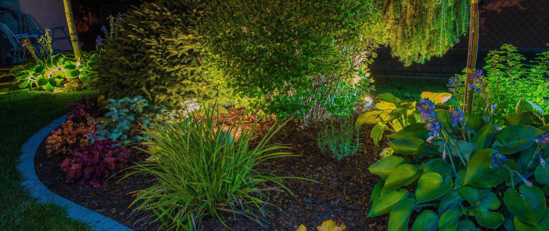Garden, Landscape & Exterior Lighting Specialists