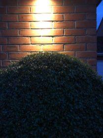 IMG 1620 e1552317040184 - illuminating Gardens, Garden Lighting Installation Gallery