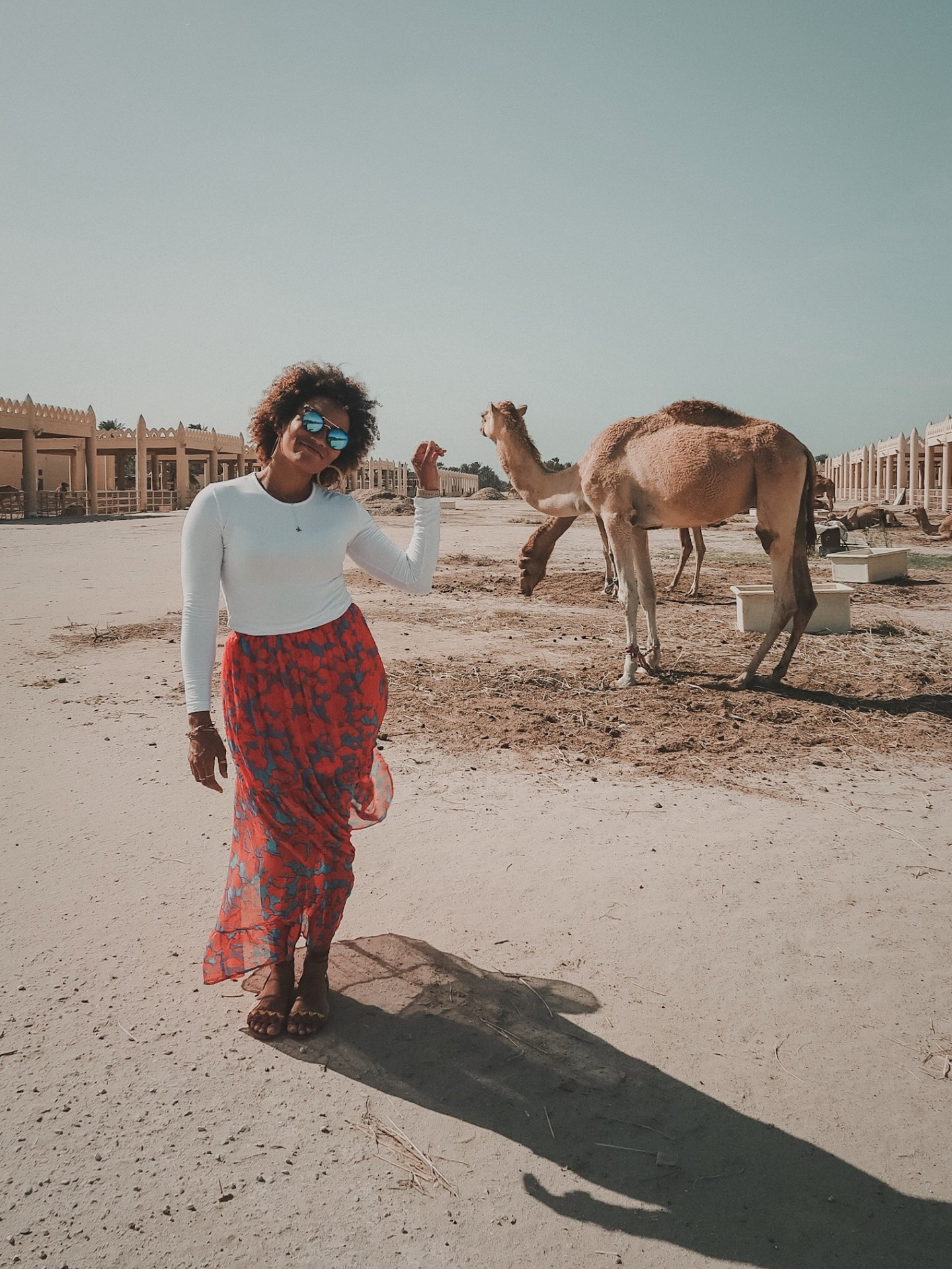 Illustrated by Sade - Woman taking photo at the Royal Camel Farm in Manama, Bahrain