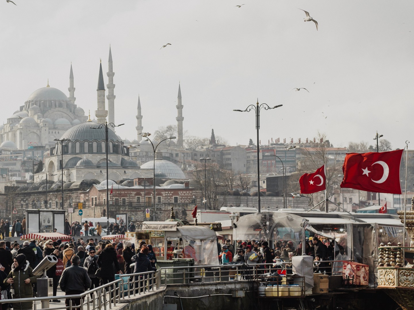 Illustrated by Sade - View of the city of Istanbul from the Galata Bridge