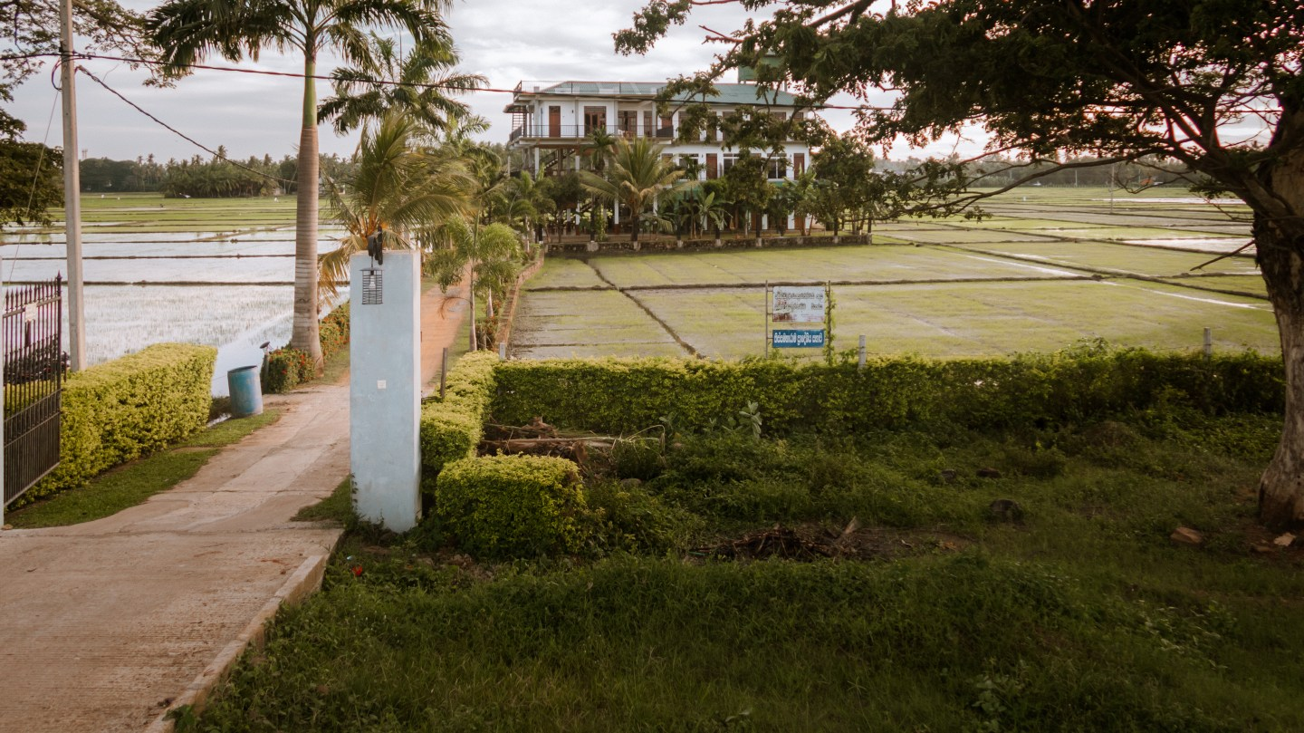 Illustrated by Sade - View of rice fields and hotel in Tissa   Sri Lanka