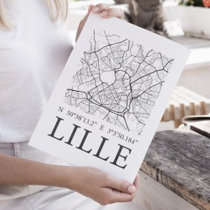 Mapping_lille_illustration_de_patrimoine