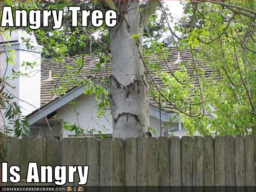 angry trees