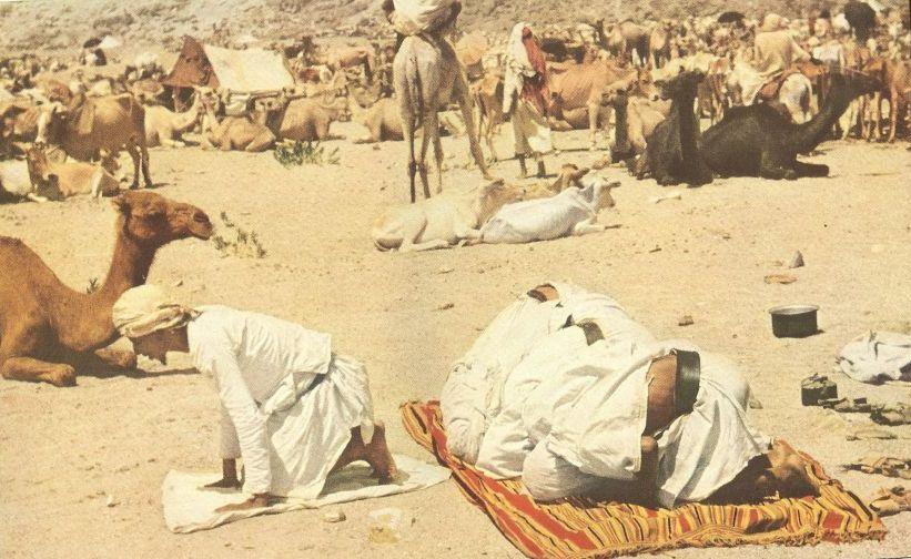 pilgrims pray